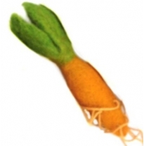 PAPOOSE - felt food, carrot